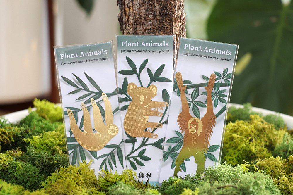 S/3 Plant Animals - Paresseux & co - S/3 Plant Animals - Paresseux & co