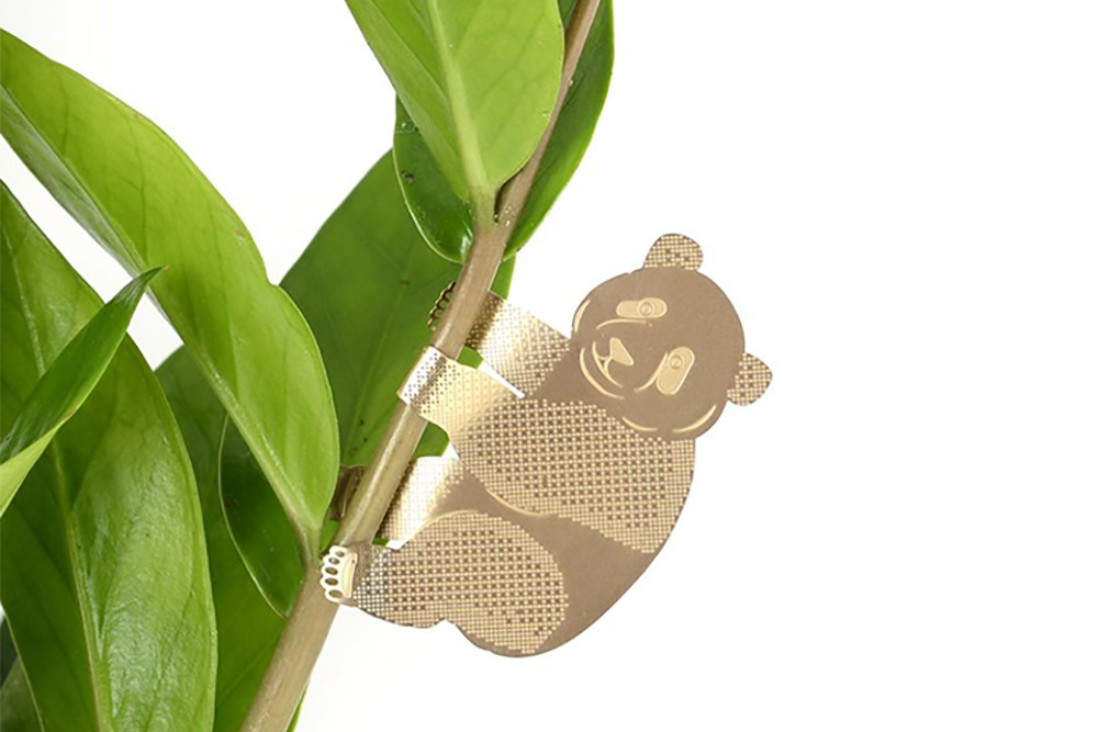 Plant Animal Panda - Plant Animal Panda