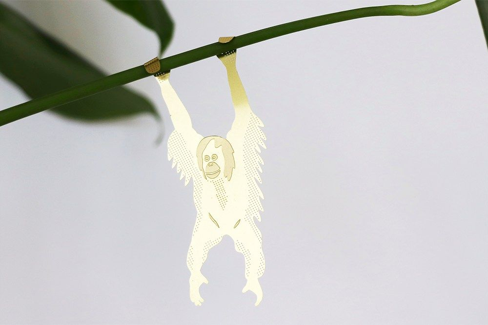 Plant Animal - Orangutan - Plant Animal - Orangutan
