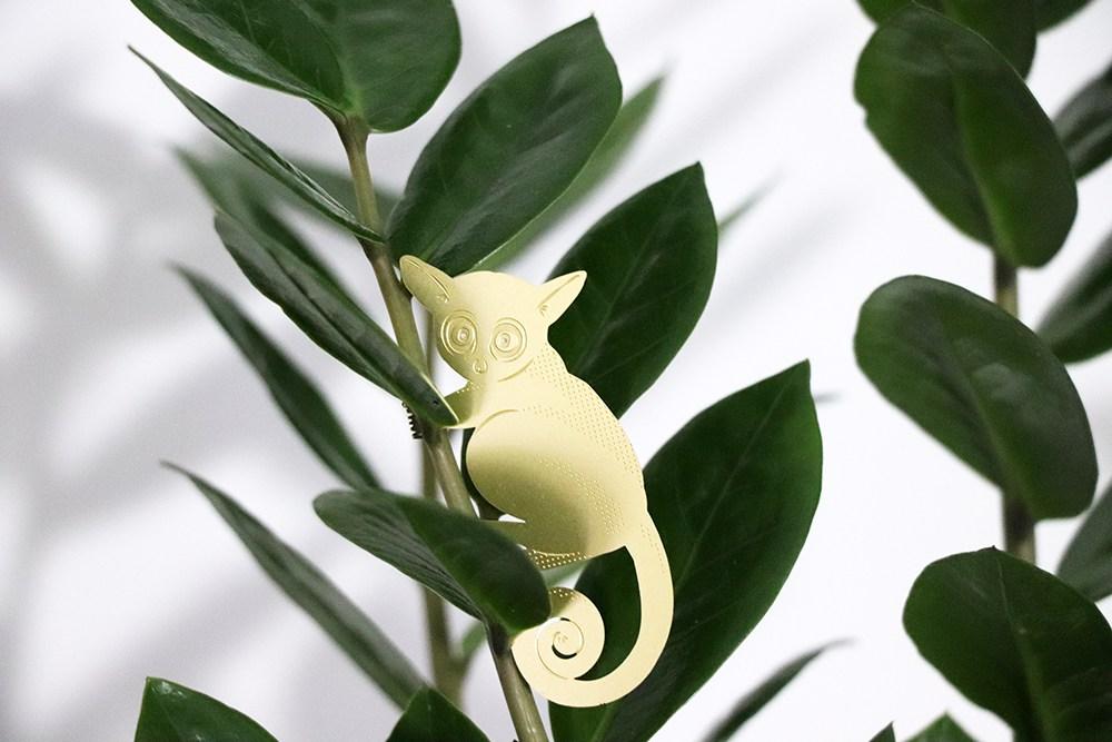Plant Animal Galago  - Plant Animal Galago