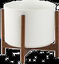 White Mid-Century Ceramic + Dark Wood Stand